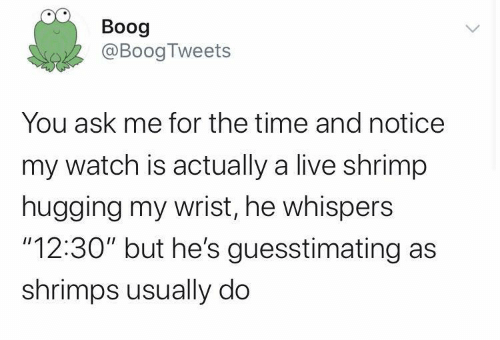 """hugging: Boog  @BoogTweets  You ask me for the time and notice  my watch is actually a live shrimp  hugging my wrist, he whispers  """"12:30"""" but he's guesstimating as  shrimps usually do"""