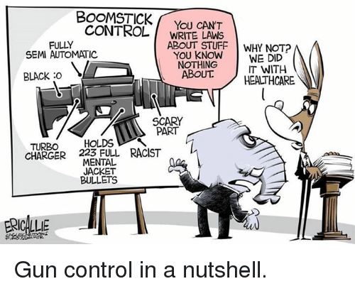 Guns, Control, and Black: BOOMSTICK  CONTROL  You CAN'T  WRITE LAWS  ABOUT STUFF  WHY NOT?  FULLY  SEMI AUTOMATIC  YOU KNOW  WE DID  NOTHING  IT WITH  ABOUT  BLACK :O  HEALTHCARE  SCARY  PART  TURBO  HOLDS  CHARGER 223 FULL RACIST  MENTAL  JACKET  BULLETS  ERICA Gun control in a nutshell.