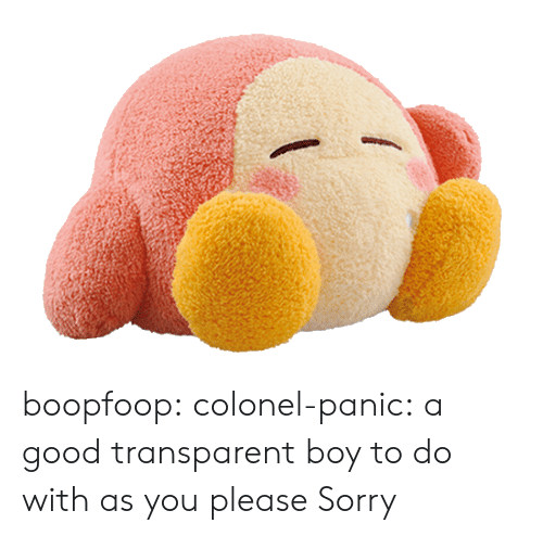 colonel: boopfoop: colonel-panic:  a good transparent boy to do with as you please  Sorry