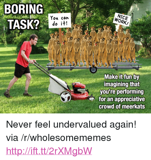 """meerkats: BORING  TASK?  You can  do it!  WORK!  imagining that  you're performing  for an appreciative  crowd of meerkats <p>Never feel undervalued again! via /r/wholesomememes <a href=""""http://ift.tt/2rXMgbW"""">http://ift.tt/2rXMgbW</a></p>"""