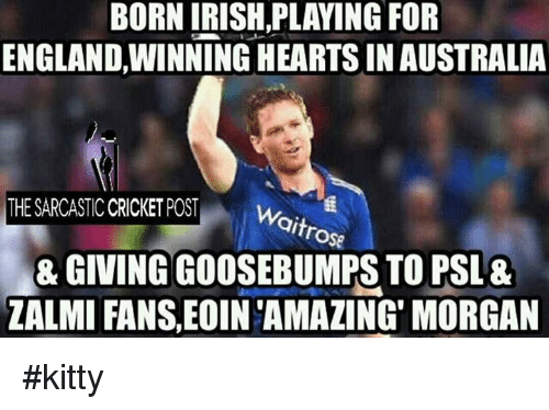 Irish, Memes, and 🤖: BORN IRISH,PLAYING FOR  ENGLANDWINNING HEARTS INAUSTRALIA  THE SARCASTIC CRICKETPOST  Wi  trose  GIVING GOOSEBUMPS TO PSL 8  ZALMI FANS,EoIN AMAZING MORGAN #kitty