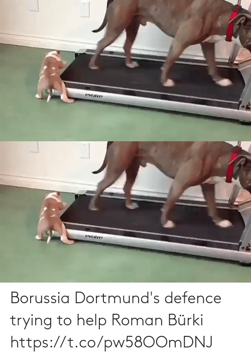 Roman: Borussia Dortmund's defence trying to help Roman Bürki   https://t.co/pw58OOmDNJ