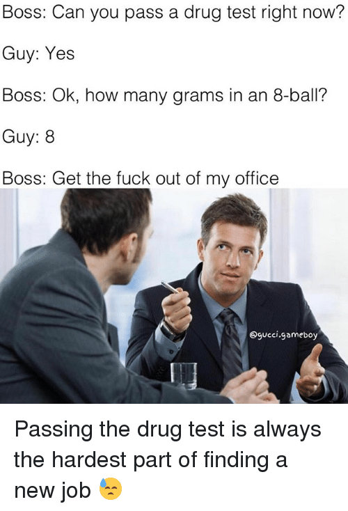 Memes, Fuck, and Office: Boss: Can you pass a drug test right now?  Guy: Yes  Boss: Ok, how many grams in an 8-ball?  Guy: 8  Boss: Get the fuck out of my office  Ogucci,gameboy Passing the drug test is always the hardest part of finding a new job 😓