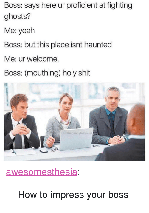 """mouthing: Boss: says here ur proficient at fighting  ghosts?  Me: yeah  Boss: but this place isnt haunted  Me: ur welcome.  Boss: (mouthing) holy shit  G: FheFunnyIntrover <p><a href=""""http://awesomesthesia.tumblr.com/post/173289499448/how-to-impress-your-boss"""" class=""""tumblr_blog"""">awesomesthesia</a>:</p>  <blockquote><p>How to impress your boss</p></blockquote>"""