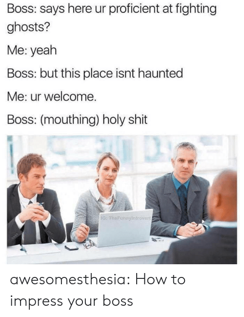 mouthing: Boss: says here ur proficient at fighting  ghosts?  Me: yeah  Boss: but this place isnt haunted  Me: ur welcome.  Boss: (mouthing) holy shit  G: FheFunnyIntrover awesomesthesia:  How to impress your boss