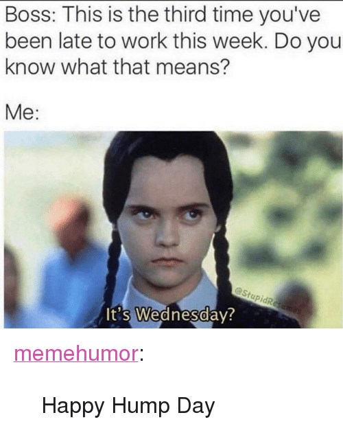 """Hump Day: Boss: This is the third time you've  been late to work this week. Do you  know what that means?  Me:  @Stu  0  t's Wednesday <p><a href=""""http://memehumor.net/post/166812056138/happy-hump-day"""" class=""""tumblr_blog"""">memehumor</a>:</p>  <blockquote><p>Happy Hump Day</p></blockquote>"""