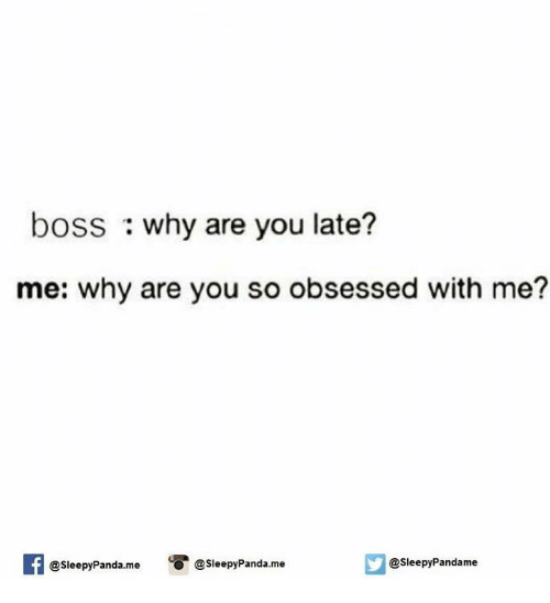 why are you so obsessed with me: boss why are you late?  me: why are you so obsessed with me?  @sleepy Pandame  O @Sleepy Panda me  @Sleepy Panda me