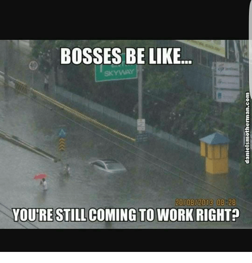 Memes, 🤖, and Bosses-Be-Like: BOSSES BE LIKE  20/08/2013 08 28  YOU'RE STILL COMING TO WORK RIGHT