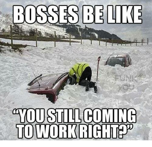 Memes, 🤖, and Boss: BOSSES BE LIKE  YOU STILL COMING  TO WORK RIGHT