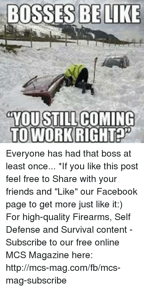"Memes, 🤖, and Boss: BOSSES BE LIKE  YOU STILL  COMING  TO WORK RIGHT Everyone has had that boss at least once...  *If you like this post feel free to Share with your friends and ""Like"" our Facebook page to get more just like it:) For high-quality Firearms, Self Defense and Survival content - Subscribe to our free online MCS Magazine here: http://mcs-mag.com/fb/mcs-mag-subscribe"