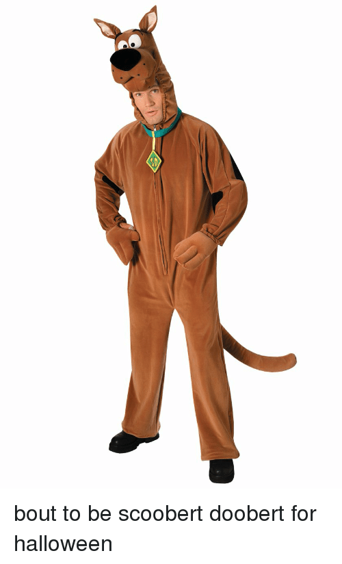 Scoobert Doobert: bout to be scoobert doobert for halloween