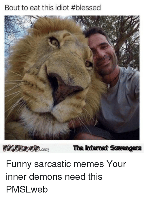 sarcastic memes: Bout to eat this idiot #blessed  The intenet Scavengers <p>Funny sarcastic memes  Your inner demons need this  PMSLweb </p>