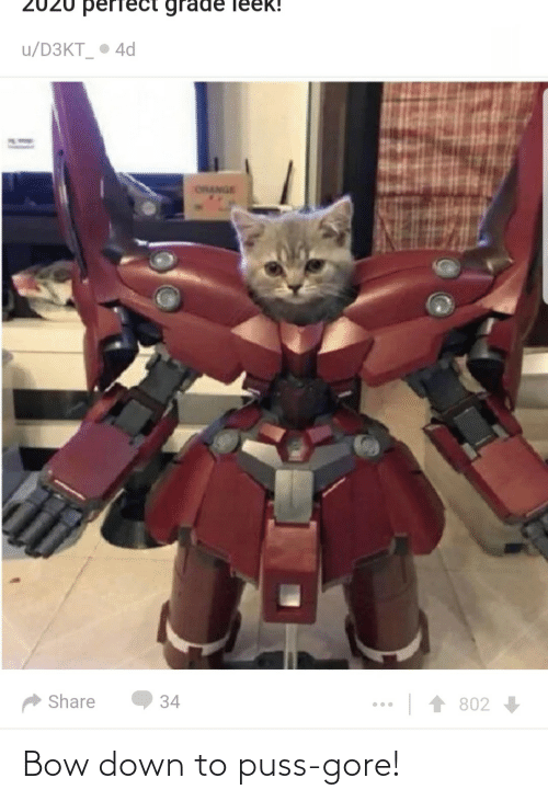 bow: Bow down to puss-gore!