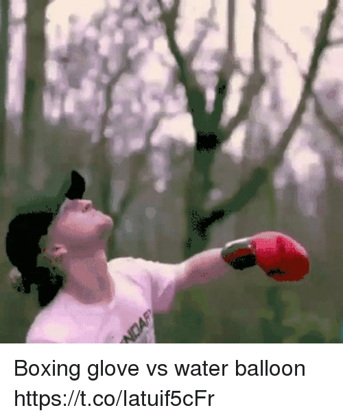 Boxing, Water, and Balloon: Boxing glove vs water balloon https://t.co/Iatuif5cFr