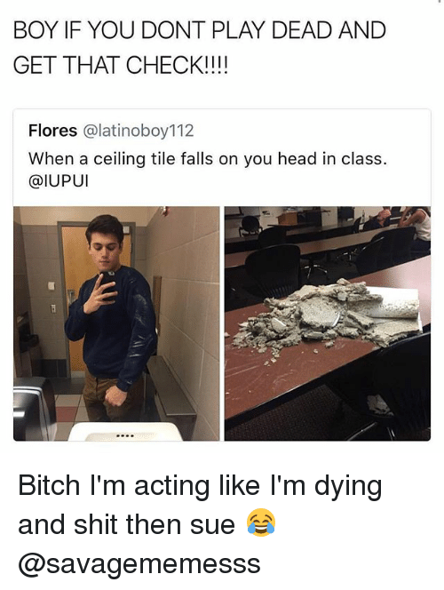 Bitch, Head, and Memes: BOY IF YOU DONT PLAY DEAD AND  GET THAT CHECK!!!!  Flores @latinoboy112  When a ceiling tile falls on you head in class.  @IUPUI Bitch I'm acting like I'm dying and shit then sue 😂 @savagememesss