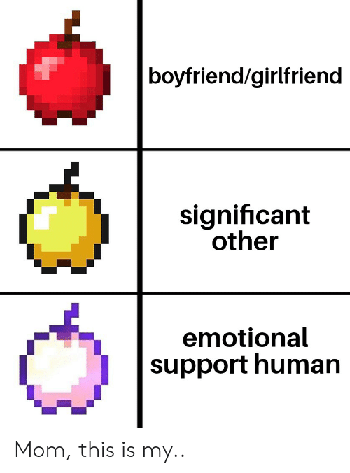 Boyfriend Girlfriend: boyfriend/girlfriend  significant  other  emotional  support human Mom, this is my..