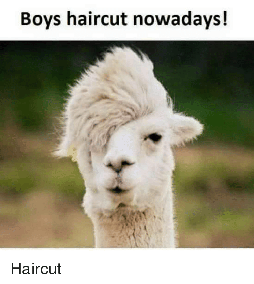 Haircut, Memes, and Haircuts: Boys haircut nowadays!Haircut