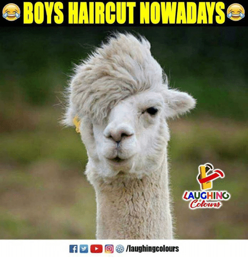 Haircut, Indianpeoplefacebook, and Boys: BOYS HAIRCUT NOWADAYS  LAUGHINO  R 0 @ /laughingcolours