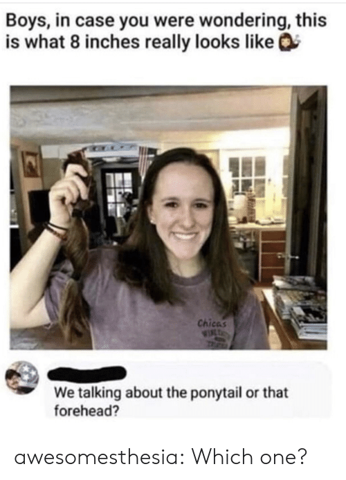 forehead: Boys, in case you were wondering, this  is what 8 inches really looks like  Chicas  WIL  We talking about the ponytail or that  forehead? awesomesthesia:  Which one?