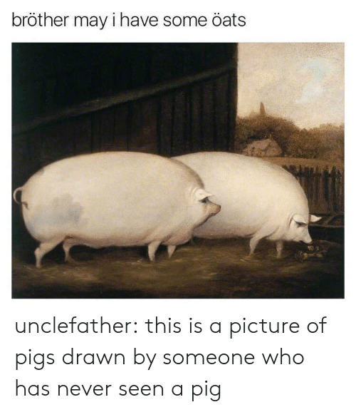May I Have Some Oats: bröther may i have some öats unclefather:  this is a picture of pigs drawn by someone who has never seen a pig