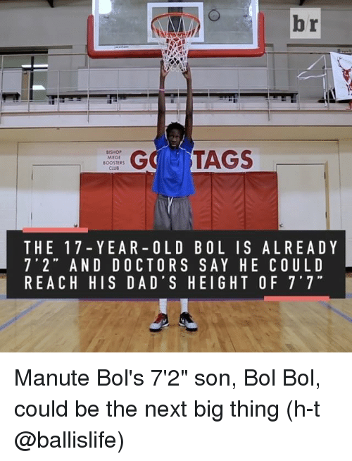 """Sports, Old, and Als: br  GC TAGS  BISHOP  MIEGE  BOOSTERS  THE 17 Y EA R OLD B OL I S AL REA D Y  7' 2"""" AND DOCTORS SAY HE COULD  REACH HIS DAD'S HEIGHT OF 7'7"""" Manute Bol's 7'2"""" son, Bol Bol, could be the next big thing (h-t @ballislife)"""