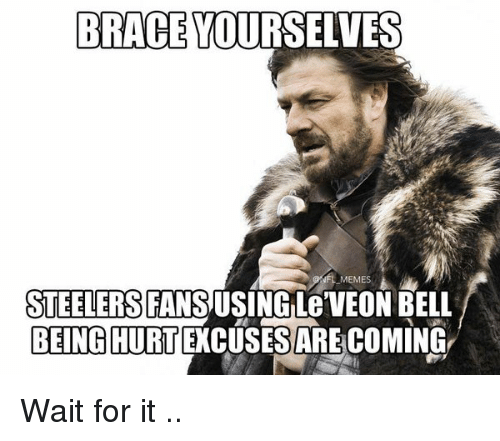 Steeler Fans: BRACE YOURSELVES  NFL MEMES  STEELERS  FANS  BEING HURTEXCUSESAREACOMING Wait for it ..
