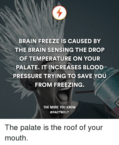 palatable: BRAIN FREEZE IS CAUSED BY  THE BRAIN SENSING THE DROP  OF TEMPERATURE ON YOUR  PALATE. IT INCREASES BLOOD  PRESSURE TRYING TO SAVE YOU  FROM FREEZING  THE MORE YOU KNOW  @FACT BOLT The palate is the roof of your mouth.