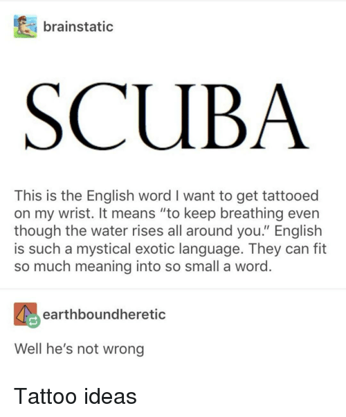 "mystical: brainstatic  SCUBA  This is the English word I want to get tattooed  on my wrist. It means ""to keep breathing even  though the water rises all around you."" English  is such a mystical exotic language. They can fit  so much meaning into so small a word  earthboundheretic  Well he's not wrong Tattoo ideas"