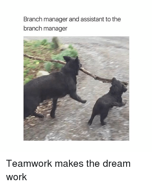 Dream Work: Branch manager and assistant to the  branch manager Teamwork makes the dream work