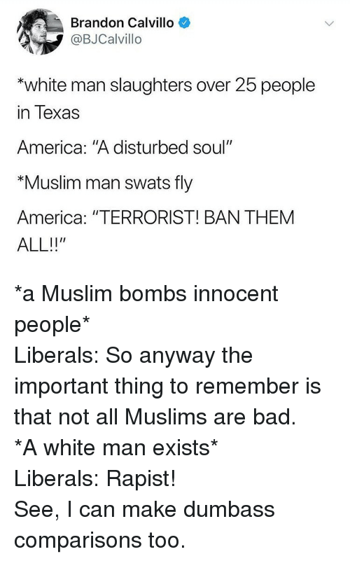"""America, Bad, and Muslim: Brandon Calvillo  @BJCalvillo  """"white man slaughters over 25 people  in Texas  America: """"A disturbed soul""""  """"Muslim man swats fly  America: """"TERRORIST! BAN THEMM <p>*a Muslim bombs innocent people*</p>  <p>Liberals: So anyway the important thing to remember is that not all Muslims are bad.</p>  <p>*A white man exists*</p>  <p>Liberals: Rapist!</p>    <p>See, I can make dumbass comparisons too.</p>"""