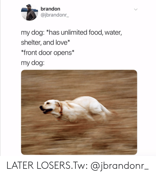 losers: brandon  @jbrandonr_  my dog: *has unlimited food, water,  shelter, and love*  *front door opens*  my dog: LATER LOSERS.Tw: @jbrandonr_