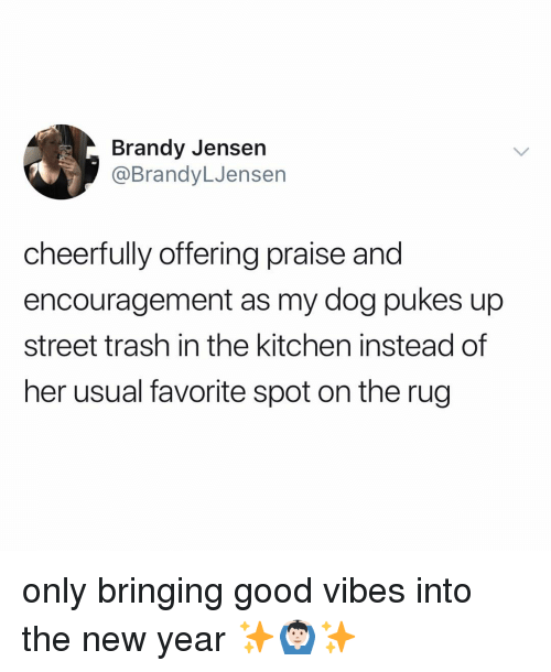 Good Vibes: Brandy Jensen  @BrandyLJensen  cheerfully offering prai  encouragement as my dog pukes up  street trash in the kitchen instead of  her usual favorite spot on the rug  se and only bringing good vibes into the new year ✨🙆🏻‍♂️✨