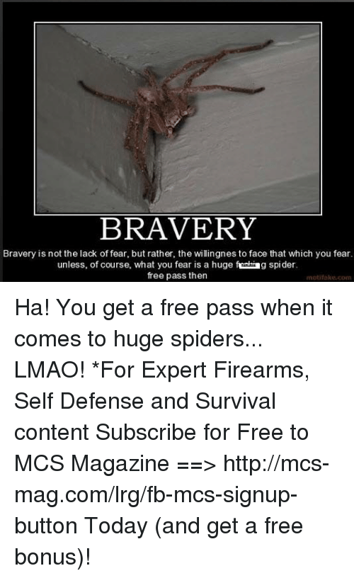 huge spiders: BRAVERY  Bravery is not the lack of fear, but rather, the willingnes to face that which you fear.  unless, of course, what you fear is a huge  g spider.  free pass then  motilake.com Ha! You get a free pass when it comes to huge spiders... LMAO!  *For Expert Firearms, Self Defense and Survival content Subscribe for Free to MCS Magazine ==>  http://mcs-mag.com/lrg/fb-mcs-signup-button Today (and get a free bonus)!