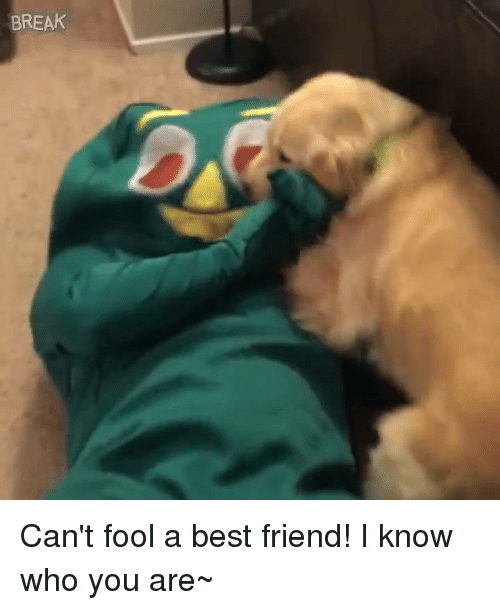 best friend: BREAK Can't fool a best friend!  I know who you are~