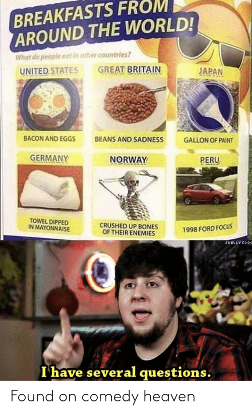 Ford Focus: BREAKFASTS FROM  AROUND THE WORLD!  What do people eat in other countries?  GREAT BRITAIN  JAPAN  UNITED STATES  BACON AND EGGS  BEANS AND SADNESS  GALLON OF PAINT  GERMANY  NORWAY  PERU  TOWEL DIPPED  IN MAYONNAISE  CRUSHED UP BONES  OF THEIR ENEMIES  1998 FORD FOCUS  SKELLYSCOC  I have several questions. Found on comedy heaven