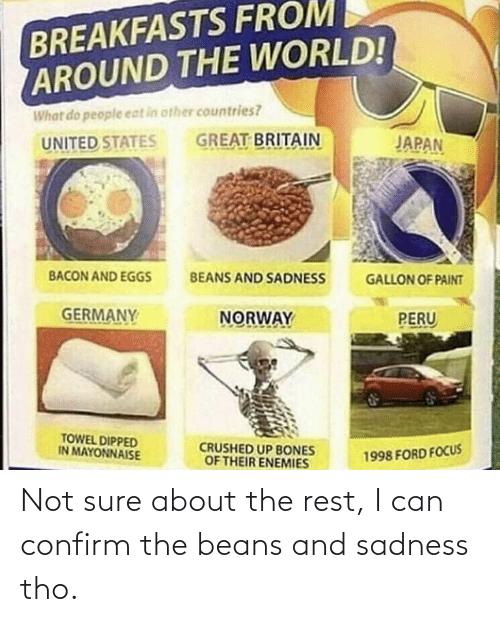 Ford Focus: BREAKFASTS FROM  AROUND THE WORLD!  What do people eat in other countries?  GREAT BRITAIN  JAPAN  UNITED STATES  BACON AND EGGSs  BEANS AND SADNESS  GALLON OF PAINT  GERMANY  NORWAY  PERU  TOWEL DIPPED  IN MAYONNAISE  CRUSHED UP BONES  OF THEIR ENEMIES  1998 FORD FOCUS Not sure about the rest, I can confirm the beans and sadness tho.