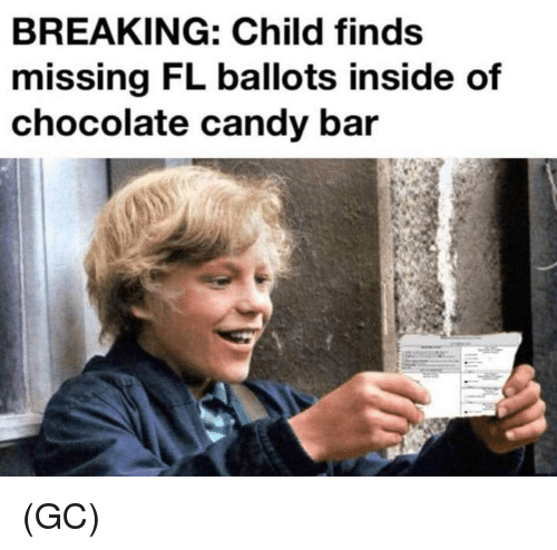 candy bar: BREAKING: Child finds  missing FL ballots inside of  chocolate candy bar (GC)