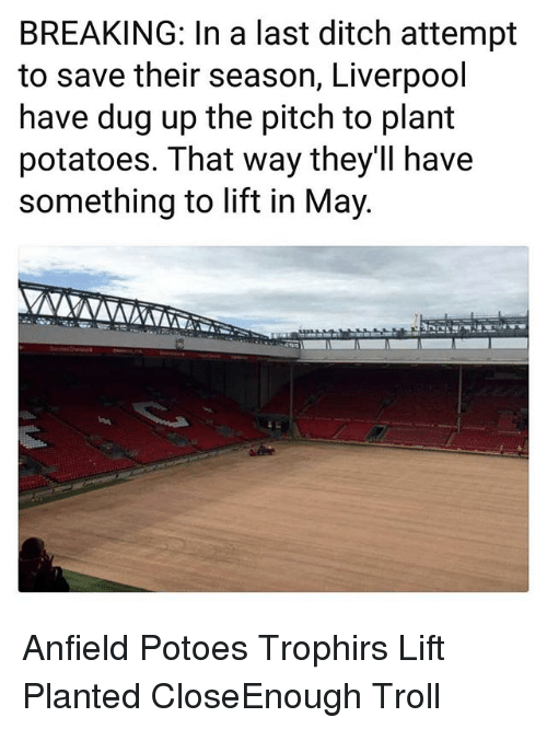 Memes, Troll, and Liverpool F.C.: BREAKING: In a last ditch attempt  to save their season, Liverpool  have dug up the pitch to plant  potatoes. That way they'll have  something to lift in May. Anfield Potoes Trophirs Lift Planted CloseEnough Troll