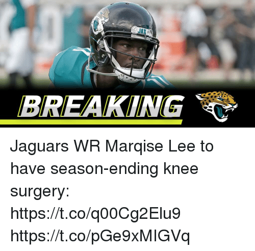 Memes, 🤖, and Jaguars: BREAKING Jaguars WR Marqise Lee to have season-ending knee surgery: https://t.co/q00Cg2Elu9 https://t.co/pGe9xMIGVq