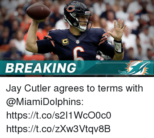 Jay, Memes, and Jay Cutler: BREAKING Jay Cutler agrees to terms with @MiamiDolphins: https://t.co/s2I1WcO0c0 https://t.co/zXw3Vtqv8B