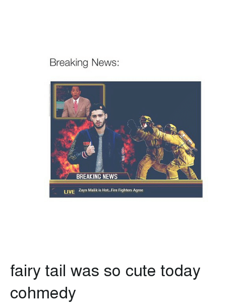 Hot Fire: Breaking News:  BREAKING NEWS  LIVE  Zayn Malik is Hot. Fire Fighters Agree fairy tail was so cute today cohmedy
