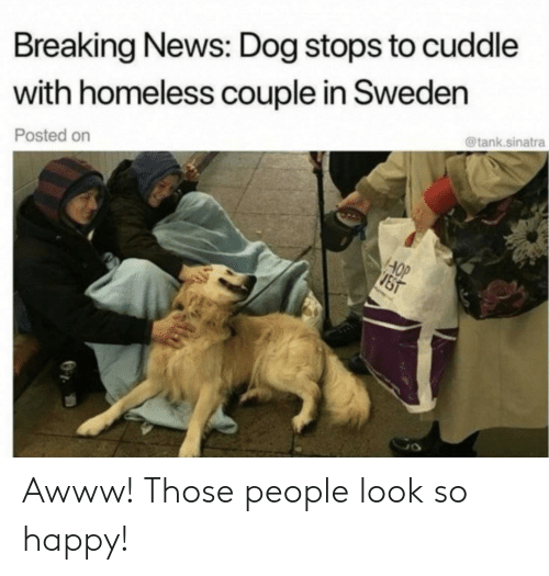 Awww: Breaking News: Dog stops to cuddle  with homeless couple in Sweden  @tank.sinatra  Posted on  AOP  JST Awww! Those people look so happy!