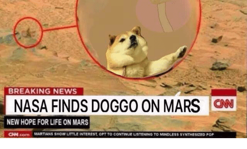 Life, Memes, and Nasa: BREAKING NEWS  NASA FINDS DOGGO ON MARS ON  NEW HOPE FOR LIFE ON MARS  CINN com MARTIANS SHOW LITTLE INTEREST, OPT TO CONTINUE LISTENING TO MINDLESS SYNTHESIZED POP