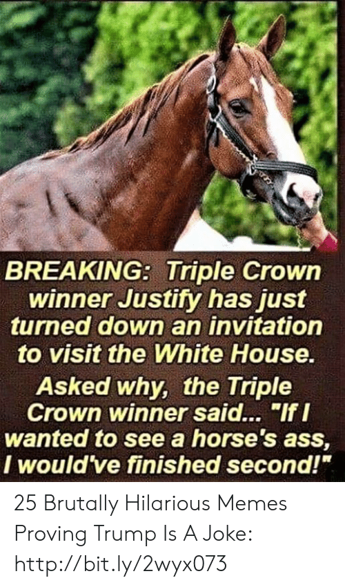 "crown: BREAKING: Triple Crowin  winner Justity has just  turned down an invitation  to visit the White House  Asked why, the Triple  Crown winner said... ""If I  wanted to see a horse's ass,  I would ve finished second!"" 25 Brutally Hilarious Memes Proving Trump Is A Joke: http://bit.ly/2wyx073"