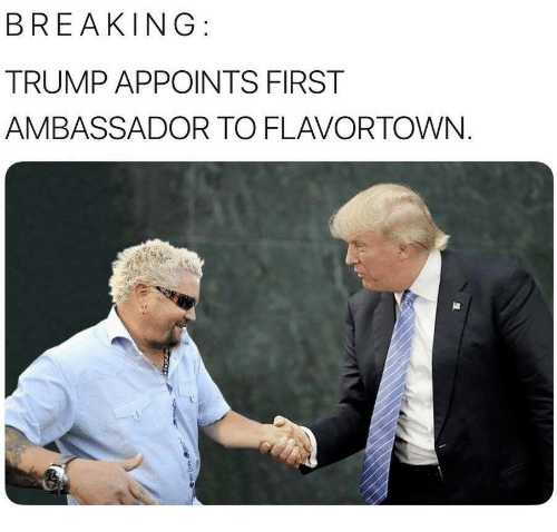 Flavortown: BREAKING  TRUMP APPOINTS FIRST  AMBASSADOR TO FLAVORTOWN.