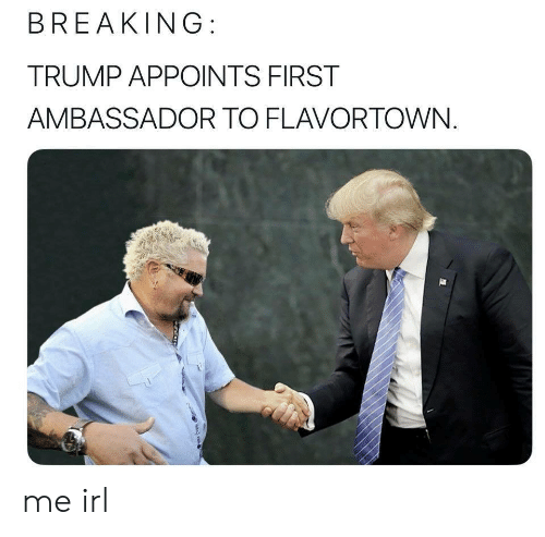 Flavortown: BREAKING:  TRUMP APPOINTS FIRST  AMBASSADOR TO FLAVORTOWN. me irl