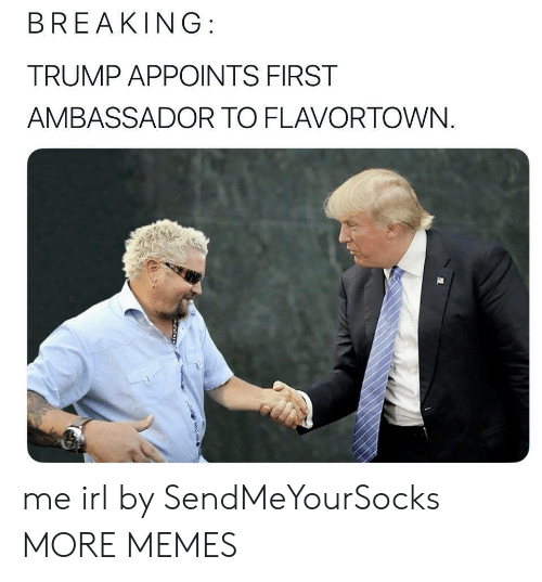 Flavortown: BREAKING:  TRUMP APPOINTS FIRST  AMBASSADOR TO FLAVORTOWN. me irl by SendMeYourSocks MORE MEMES
