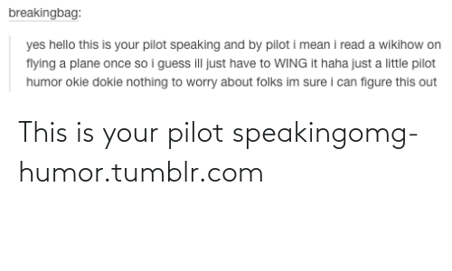 Wikihow: breakingbag:  yes hello this is your pilot speaking and by pilot i mean i read a wikihow on  flying a plane once so i guess ill just have to WING it haha just a little pilot  humor okie dokie nothing to worry about folks im sure i can figure this out This is your pilot speakingomg-humor.tumblr.com