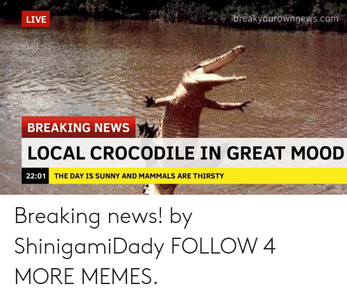 Breakyourownnews Com: breakyourownnews.com  LIVE  BREAKING NEWS  LOCAL CROCODILE IN GREAT MOOD  22:01  THE DAY IS SUNNY AND MAMMALS ARE THIRSTY Breaking news! by ShinigamiDady FOLLOW 4 MORE MEMES.