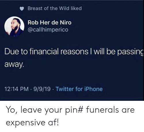 breast: Breast of the Wild liked  Rob Her de Niro  @callhimperico  Due to financial reasons I will be passing  away.  12:14 PM 9/9/19 Twitter for iPhone Yo, leave your pin# funerals are expensive af!
